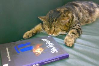 Ruská knihovna má úředně kočičího bibliotékaře